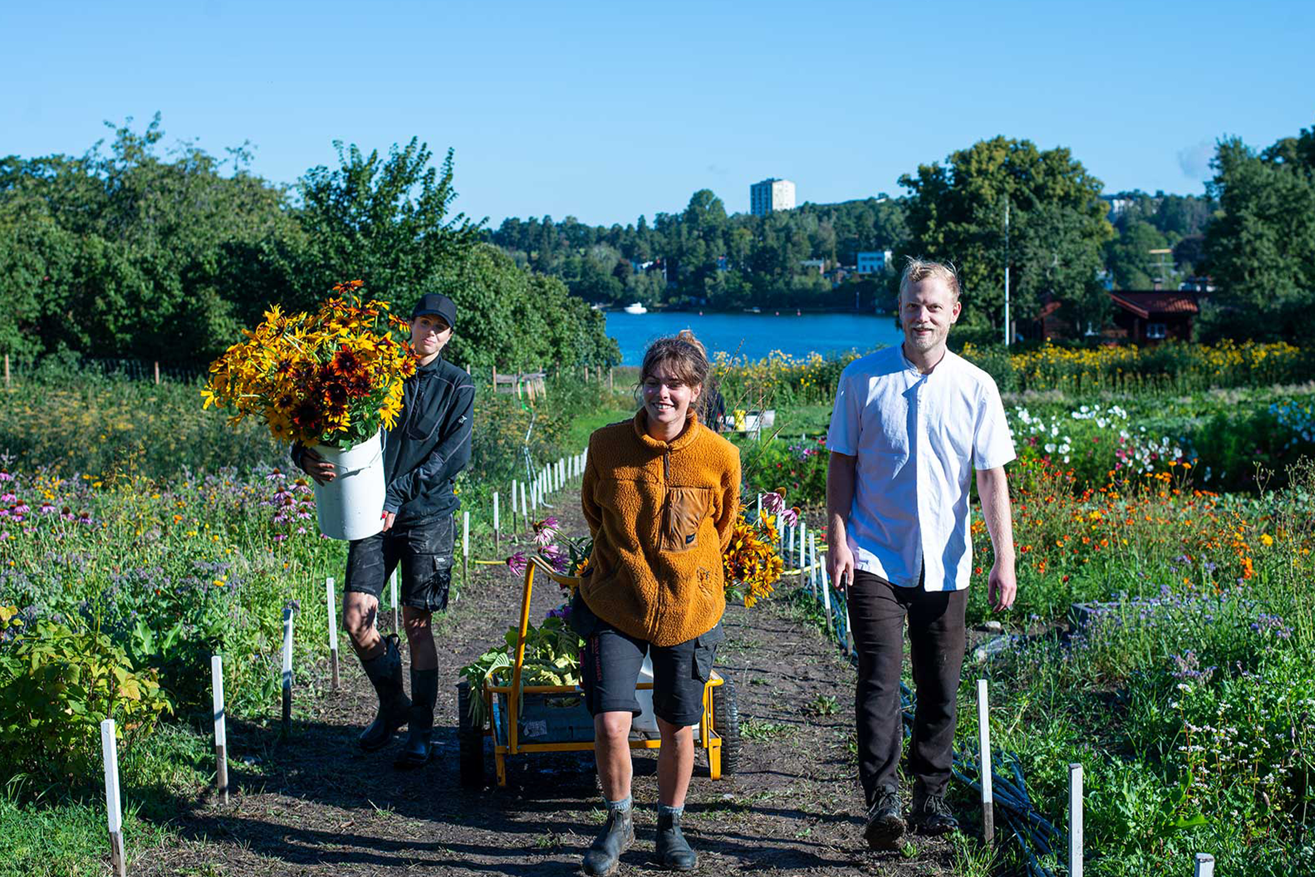 ecological urban farming three people with todays harvest